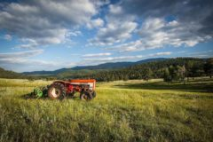 Programs and Assistance to Establish, Enhance, and Grow Your Farm and Ranch